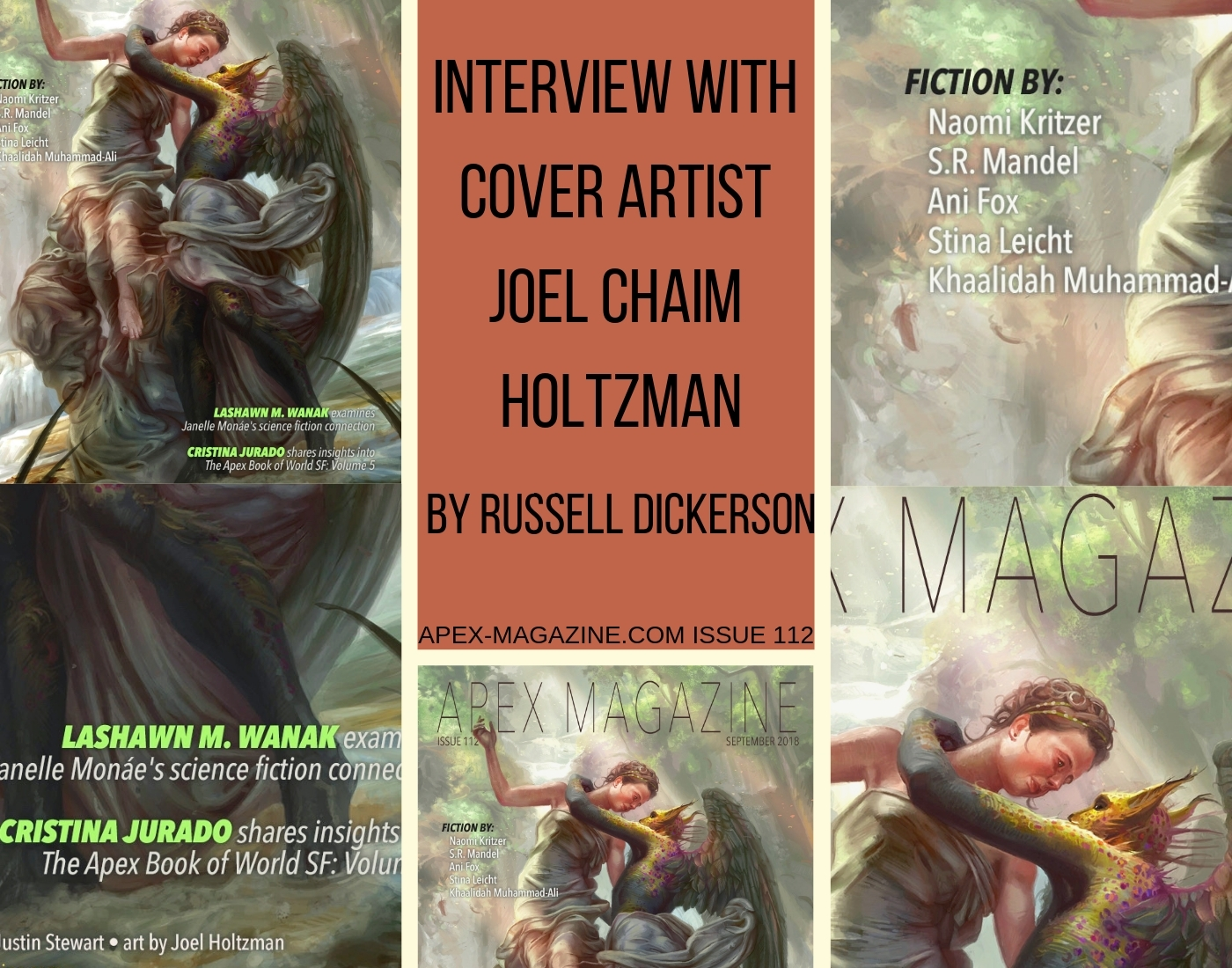 Interview with Cover Artist Joel Chaim Holtzman