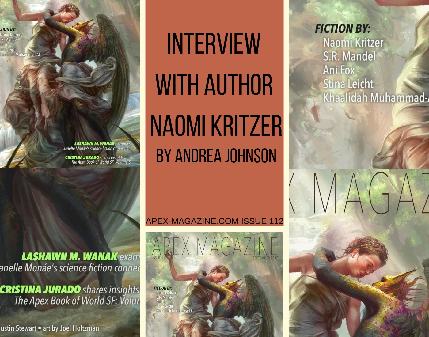 Interview with Author Naomi Kritzer