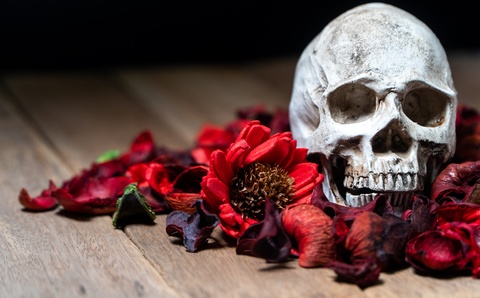 Death Flowers of Never-Forgotten Love